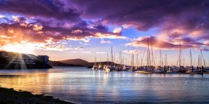 Abel Point Marina by Questavia