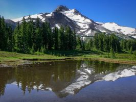 Mount Jefferson Reflection by shawnstorm