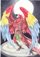 Goddess Macaw by m-lupus