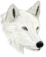 White as Snow by ravenescence