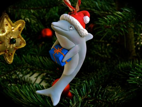 Christmas dolphin by dschooo