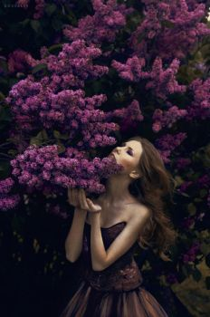 Lilac by rossalev-andrey