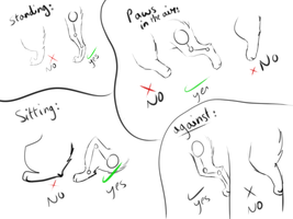 Quick cartoon hind leg / back paw tutorial by RippedMoon