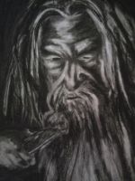 Gandalf (from the Lord of the Rings) by ConorTheStarchilde