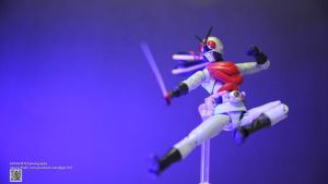S.H. Figuarts Kamen Rider X by Digger318