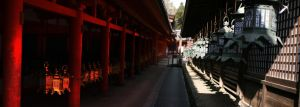 Lanterns in Nara by frenchbear
