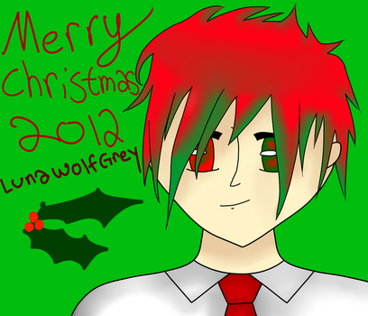 Merry Christmas :D by LunaWolfGrey