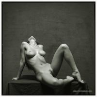 Erotic pose 6 by amelkovich
