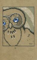 Little owl by air-art-recycled
