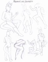 Kragith Anatomy Guide - Poses by Modified-Rabbit