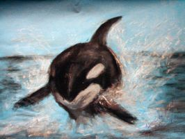 Killer Whale by rudhthoronwen