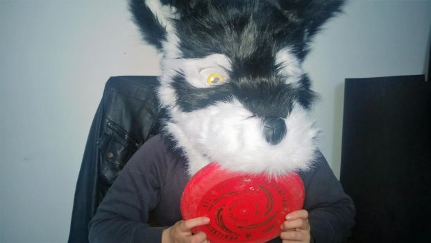 My fursuit head by Chriss64
