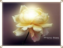 Mystic Rose by RazielMB