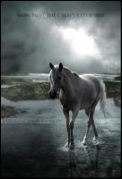 the calm's returned by Evanescent-Designs
