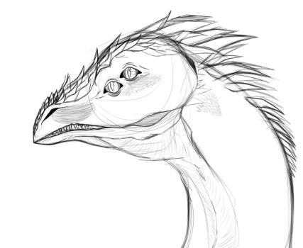 Dragon Headshot WIP by cookie2202