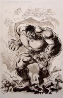 NYCC 2009 Hulk sketch by Cinar