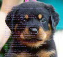 I'm Sorry I'm a Rottweiler by RENTHEADmeaghan