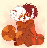Red Panda Snuggles by celesse