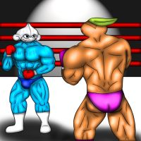 Pokemon Boxing Association: Meditite Vs. Nuzleaf