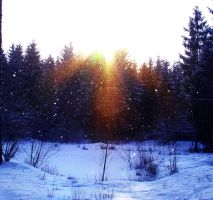 Snowing and Sunshine 1 by Jantiff-Stocks