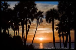 sunset at Clearwater, Fl by jj-lynn