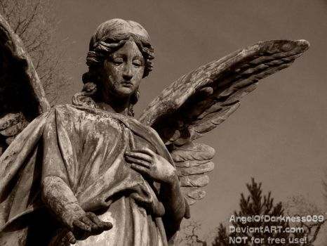 The dark cemetery Angel by AngelOfDarkness089