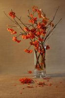 autumn bouquet by mariall