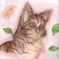 Leafstar by Iceity