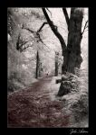 The Foreordained Way by moszkito