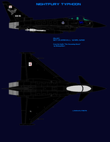 Nightfury Typhoon by lonewolf3878