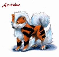 Realistic Arcanine by ChelseaGirly