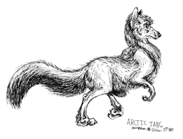 Arctic Tang by Falcolf