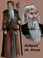 The White Council : Radagast the Brown by MellorianJ