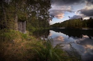 The Beginning Of Fall by Mizth