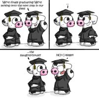 Graduation by tibbers