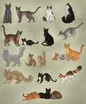 So many cats... by AnnMY