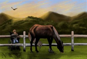 Equine Therapy - Objective 1 by NightingaleStables