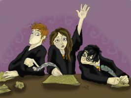 Harry Potter Trio by moehawk37