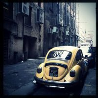 Alley Bug by elizabethunseelie