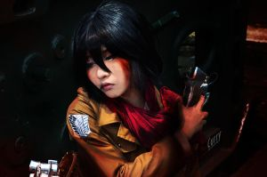 Mikasa Ackerman (Attack on Titan) by kuricurry