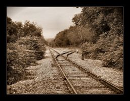 A Track Diverged by syrenemyst