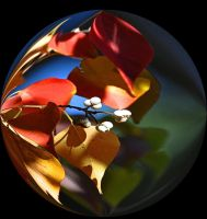 Leaf Berry Globe by Tailgun2009
