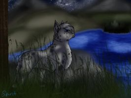 Ashfur- What I Do For You by Leapingspirit