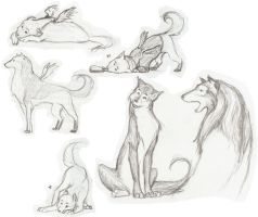 Dogs - Sketches by mei-ming