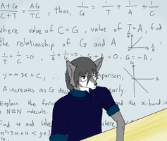 Doodle 6 - Busy with maths and work by KakeruOgami