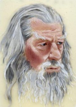Ian McKellen as Gandalf the Gray by The-Tinidril