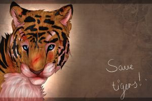 Save tigers! by Renkat