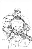 Star Wars 20 Cover Pencils by TerryDodson