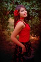 Lady in Red by mony03d