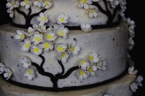 Blossom Wedding Cake by marneycakes